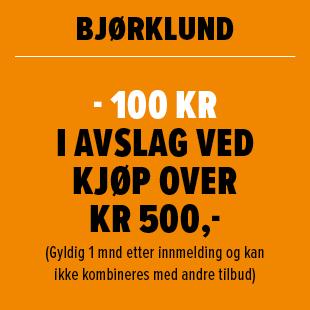 Bjørklund - 100 kr